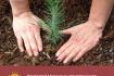 Классный час «Экология нашей планеты»